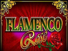 Flamenco Rose